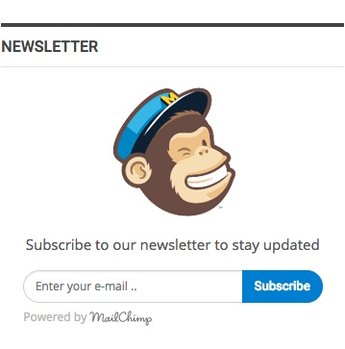 MailChimp widget in Publisher