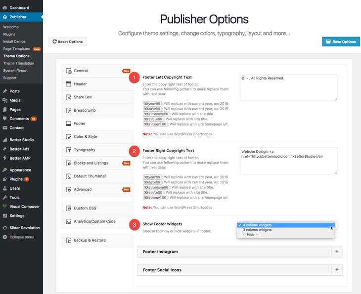 Footer options in Publisher - image(1)