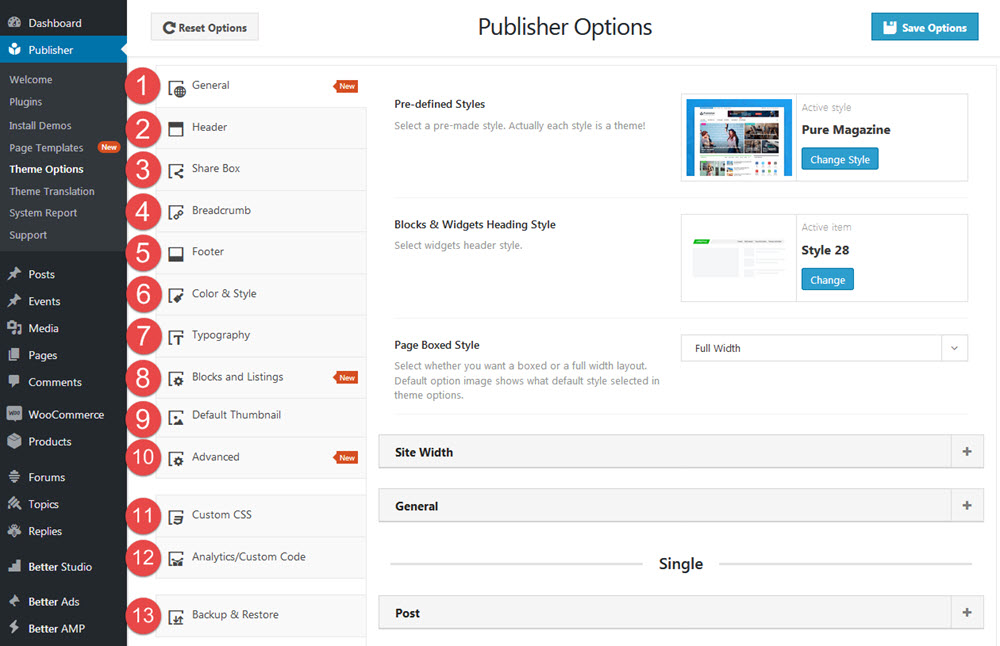 Publisher option panel